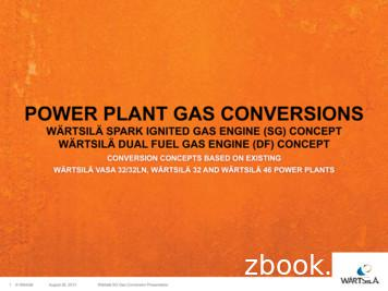 POWER PLANT GAS CONVERSIONS