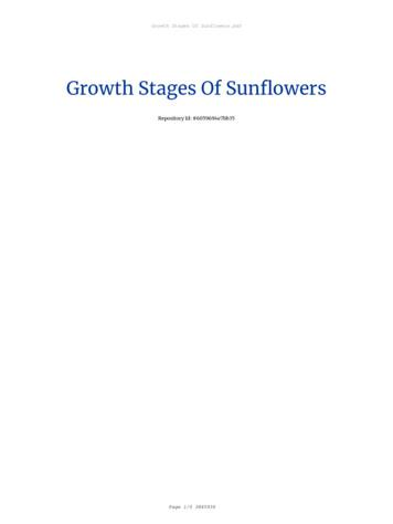 Growth Stages Of Sunflowers