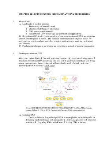 CHAPTER 14 LECTURE NOTES : RECOMBINANT DNA TECHNOLOGY A .