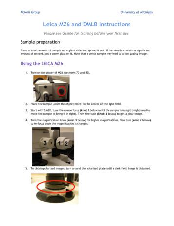 Leica MZ6 and DMLB Instructions - McNeil Group