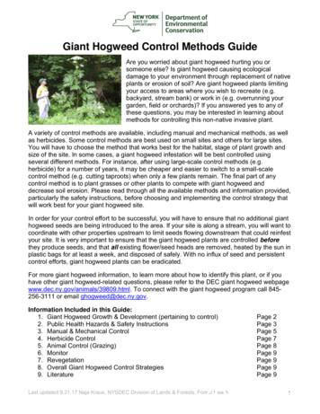 Giant Hogweed Control Methods Guide - New York State .
