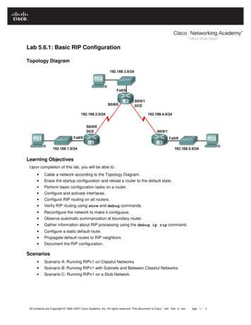 Lab 5.6.1: Basic RIP Configuration