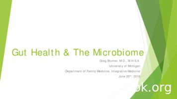 Gut Health & The Microbiome