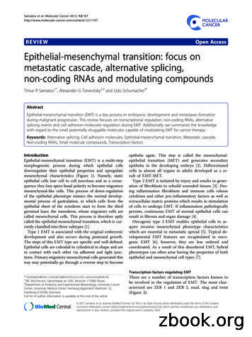 REVIEW Open Access Epithelial-mesenchymal transition .