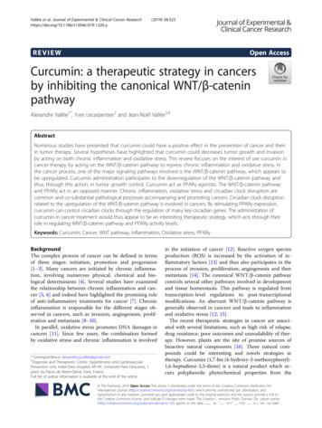 Curcumin: a therapeutic strategy in cancers by inhibiting .